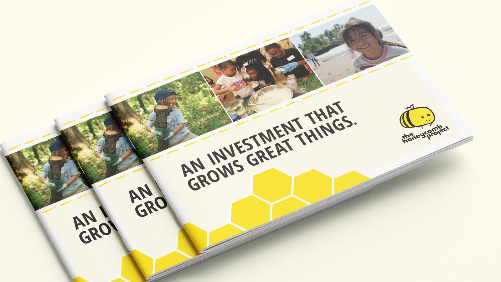 The Honeycomb Project - Corporate Brochure